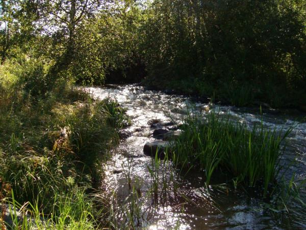 Порог на реке Миккелица