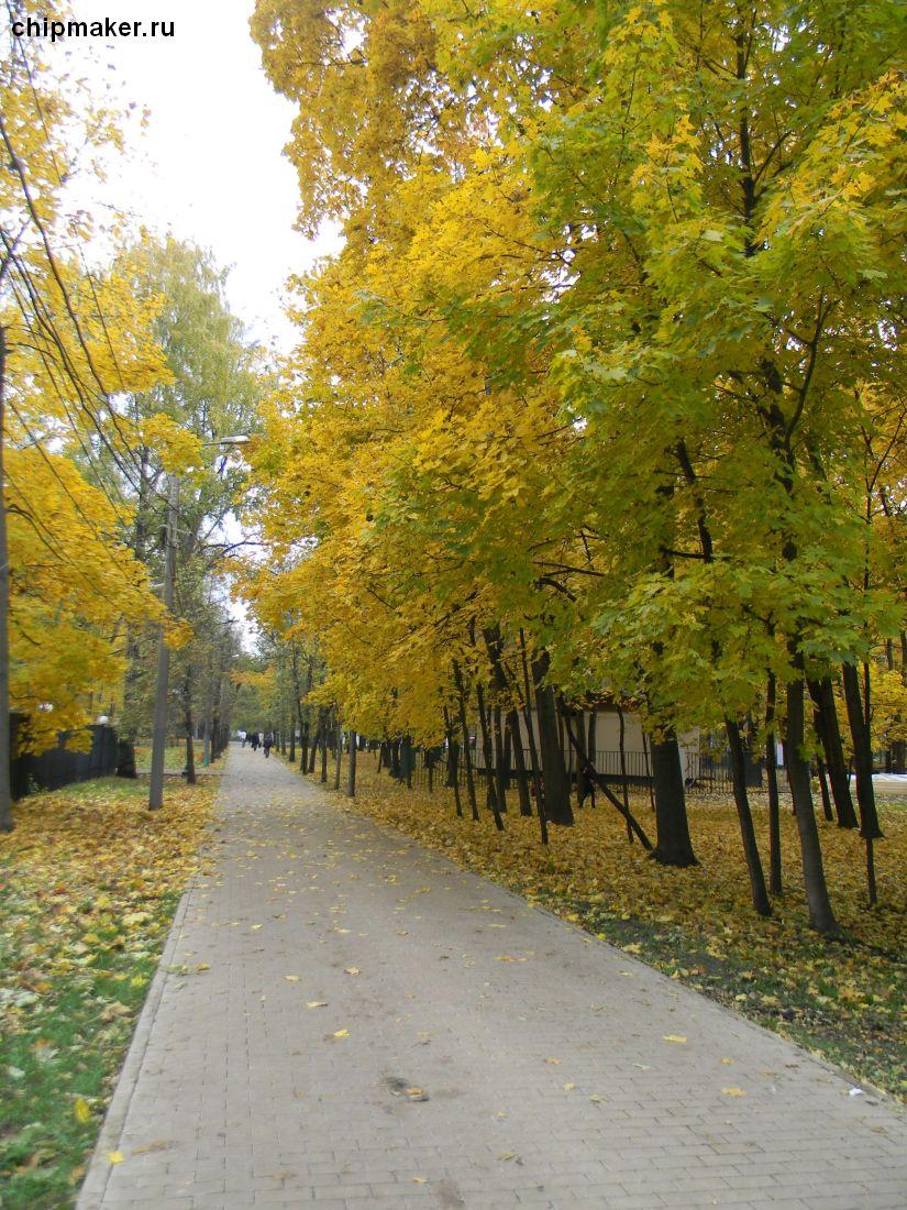 """Парк """"Сокольники"""", октябрь 2013г."""