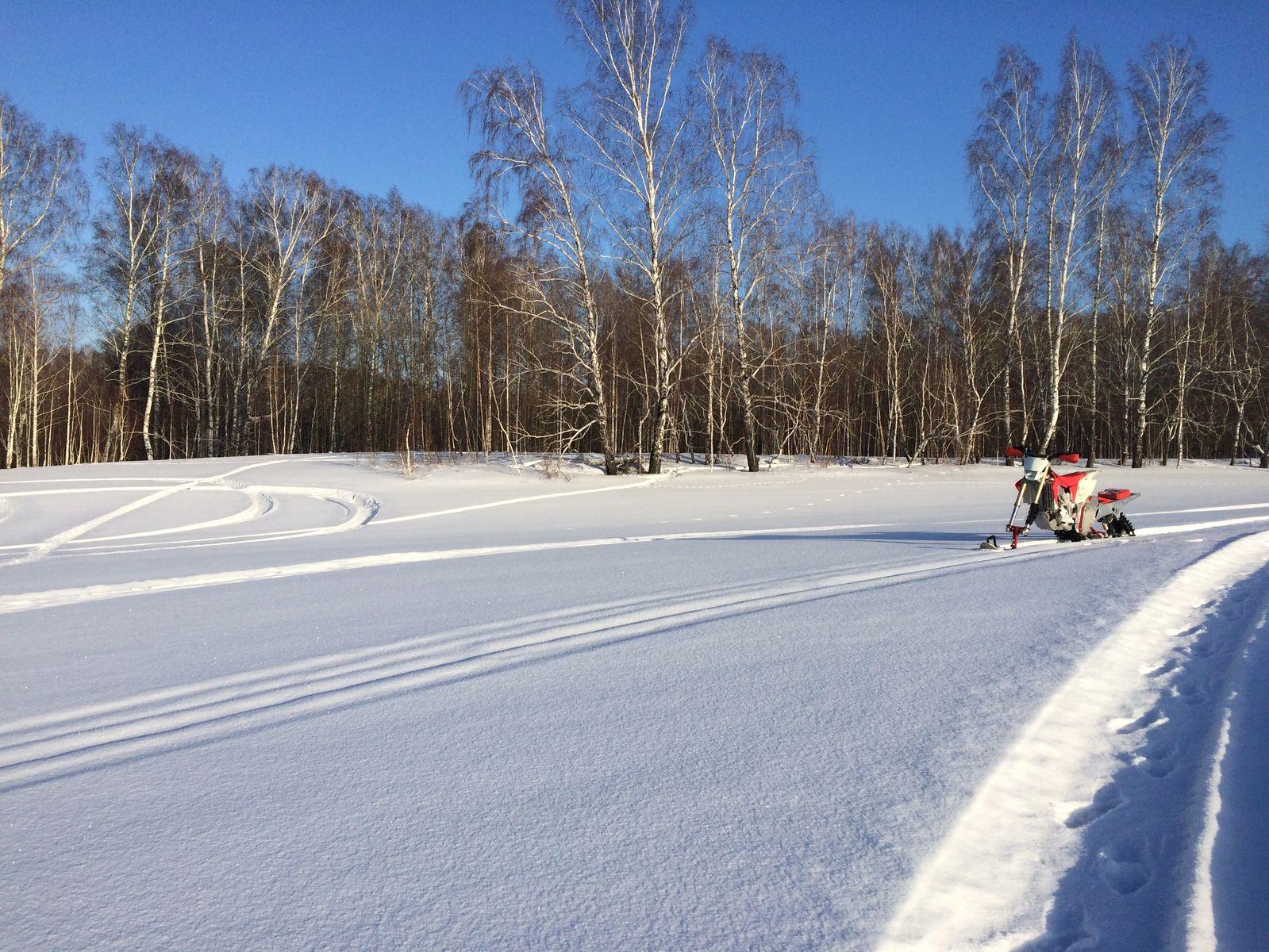 следы на снегу) заяц лиса лыжник и я)))