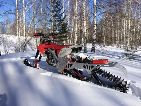 весенняя  зима в лесу)