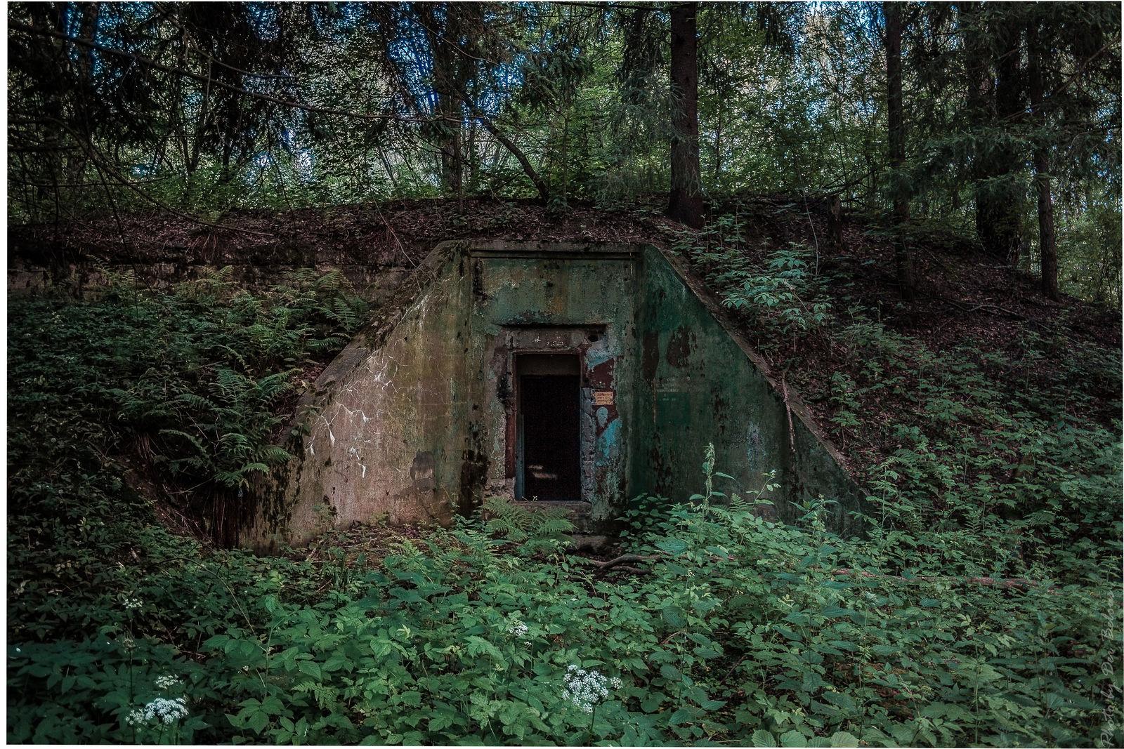 Затерянный бункер.
