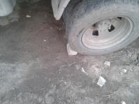 post-95929-048726700 1397718054_thumb.jpg