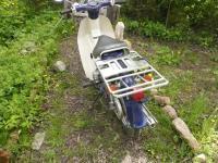 Honda super cub 50cc, или Редкий в России, но самый массовый в мире мопед.: P1090177.JPG