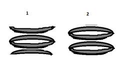 Расположение тарельчатых пружин.png