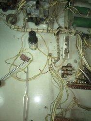 DSC_3557.thumb.jpg.a67b3b9fe505b4669123fdd2bc009451.jpg
