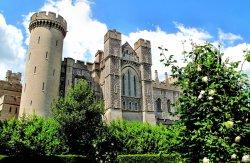 arundel-castle-rose-garden-goroda-dvorcy-752255.thumb.jpg.b685667c264a82ef39728037182bb7a6.jpg